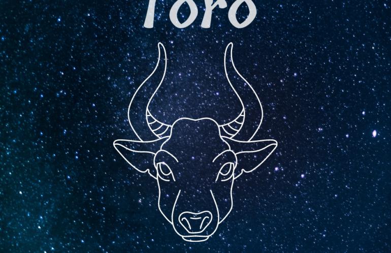 caratteristiche del segno Toro
